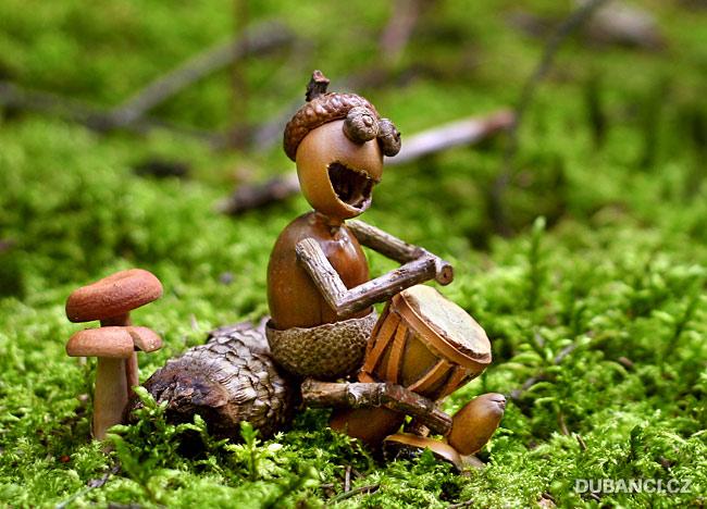 Dubánek bubnuje na bongo