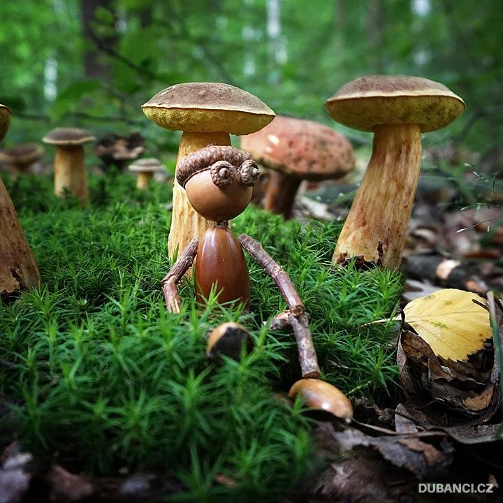 Hlídač hub