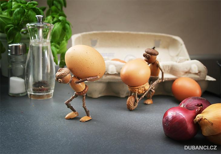 Dubánci kradou vejce!