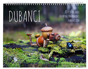 Nice calendars with my acorn elves - various versions and photos